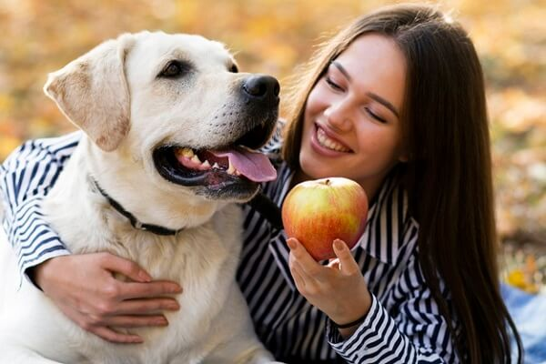 Can Dogs Eat Apples
